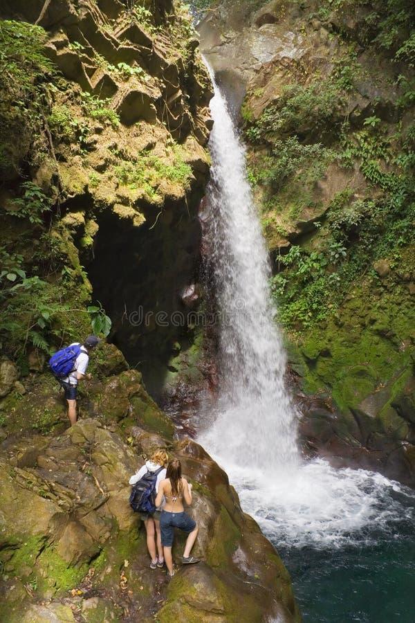 vattenfall för costaoropendolarica arkivfoton