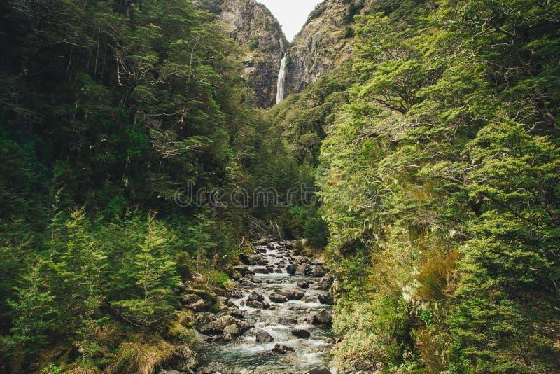 Vattenfall för jäkel` s Punchbowl i nationalparken för passerande för Arthur ` s, arkivbild