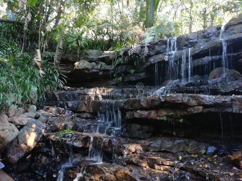 vattenfall f?r naturpark royaltyfria bilder