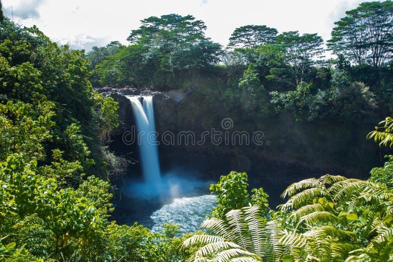 Vattenfall Hilo, Hawaii royaltyfri foto