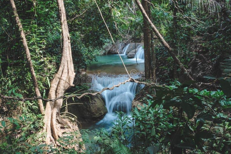 Vattenfall i den djupa skogen royaltyfria foton