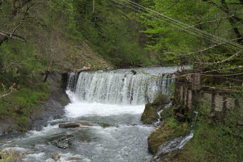 Vattenfall i den Kaukasus reserven royaltyfria foton