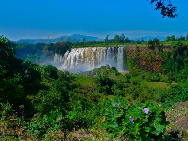 Vattenfall i Etiopien royaltyfria bilder