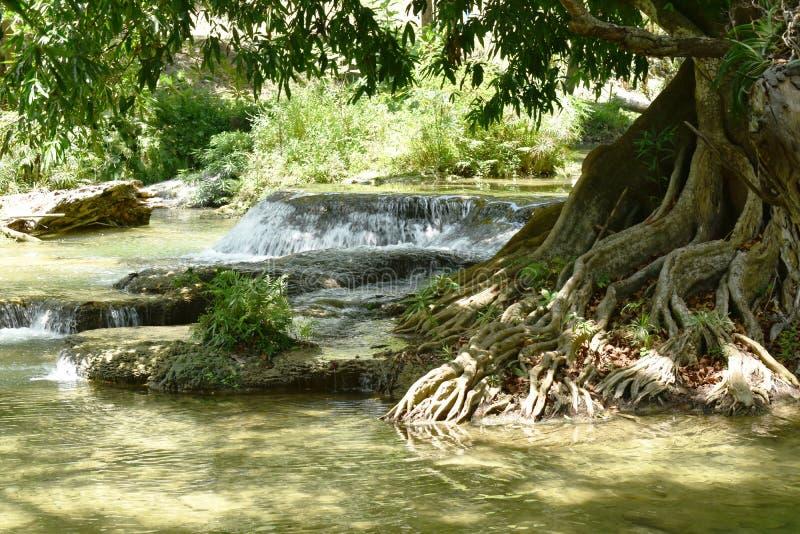 Vattenfall i f?r nationalparklopp f?r sju liten flicka l?ge i Thailand royaltyfria bilder