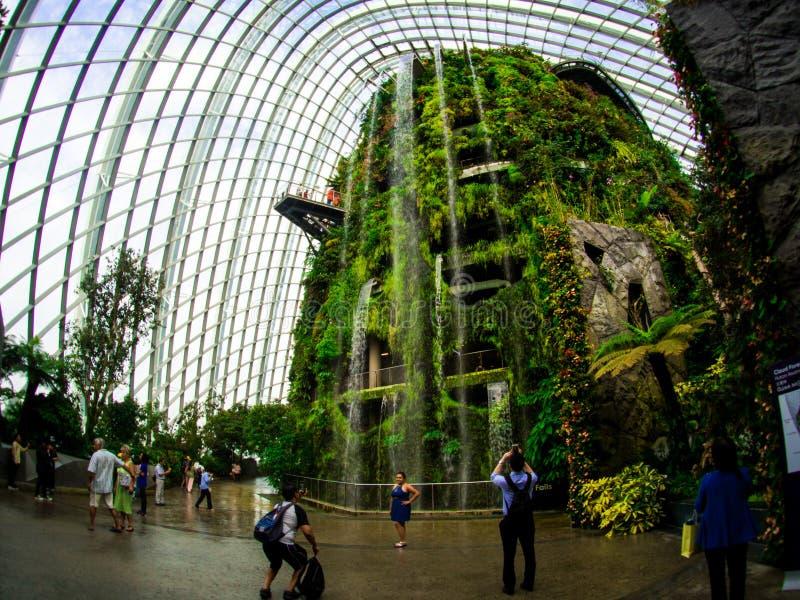 Vattenfall i molnet Forest Dome på trädgårdar vid fjärden, Singapore royaltyfria foton