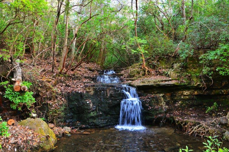 Vattenfall i parkera royaltyfri foto
