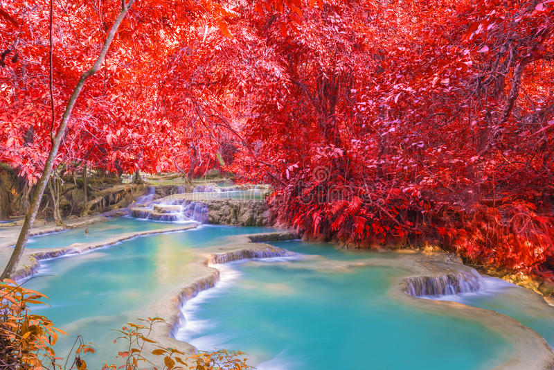 Vattenfall i regnskogen (Tat Kuang Si Waterfalls på Laos royaltyfria foton