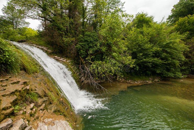 Vattenfall i skogen Abchazien royaltyfria bilder