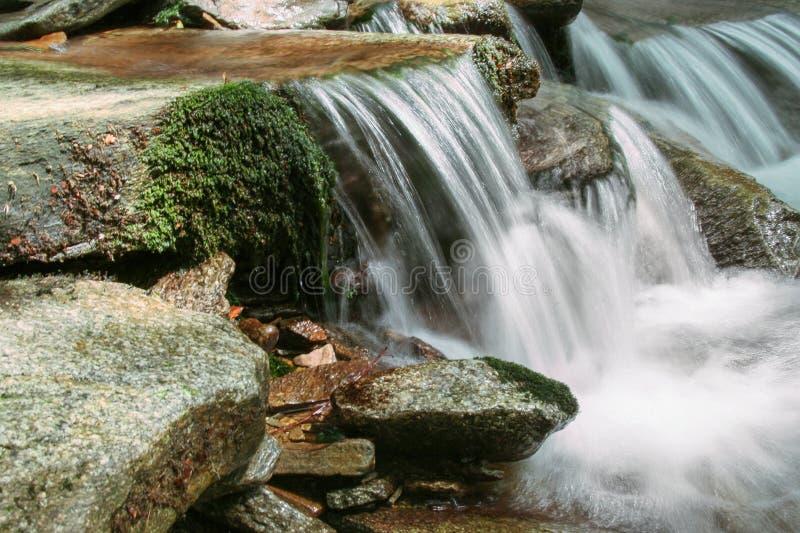 Vattenfall i skogen, berg royaltyfri foto
