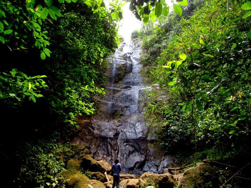 Vattenfall i skogen Ciamis västra Java royaltyfri fotografi