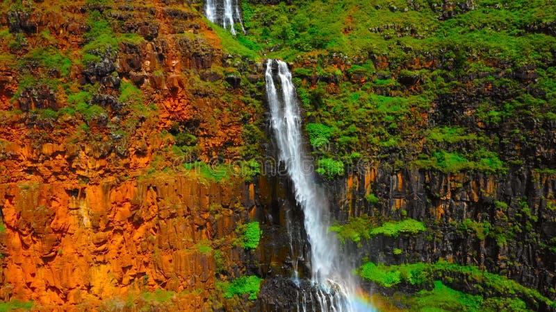 Vattenfall i skogen i hawaii || Applåderar imponerande en Akaka nedgångar i Hilo, Hawaii 400 fot till en naturlig pöl royaltyfri foto