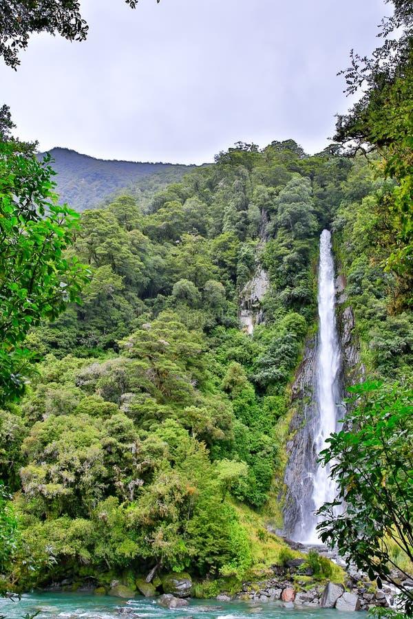 Vattenfall i skogen i den Westland nationalparken, Nya Zeeland royaltyfri fotografi