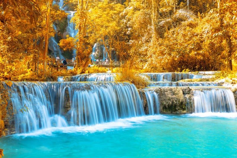 Vattenfall i skogen, namn Tat Kuang Si Waterfalls i Luang arkivfoton