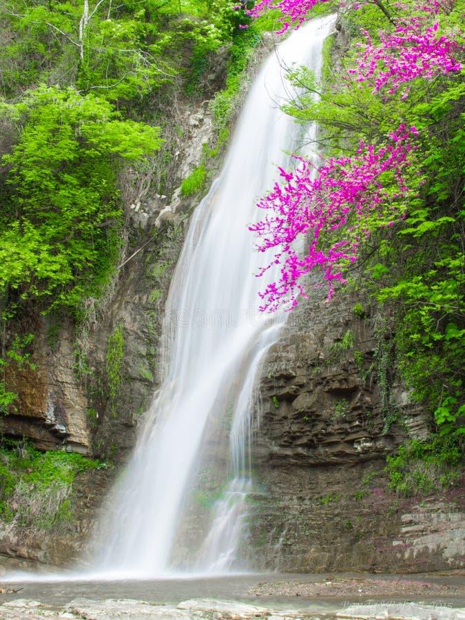 Vattenfall i Tbilishi royaltyfri fotografi
