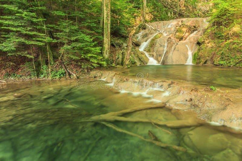 Vattenfall, kaskader och genomskinlig golf i skogen, Beusnita nationalpark, Rumänien royaltyfri fotografi