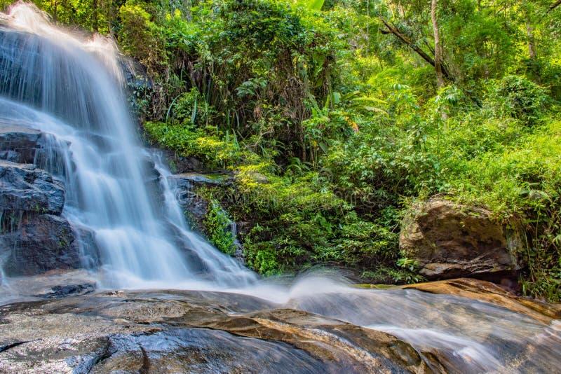 Vattenfall och skog arkivbild