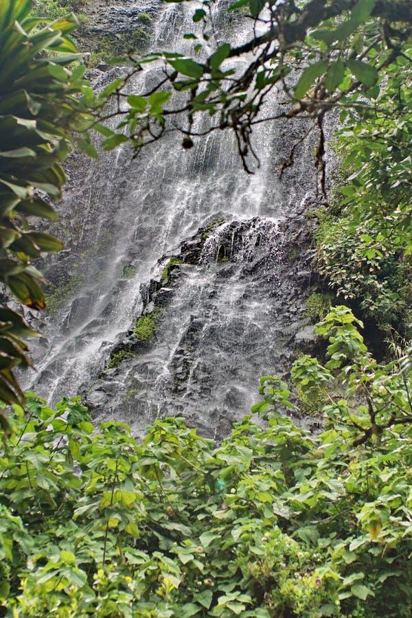 Vattenfall ovanför Banos, Ecuador royaltyfria foton