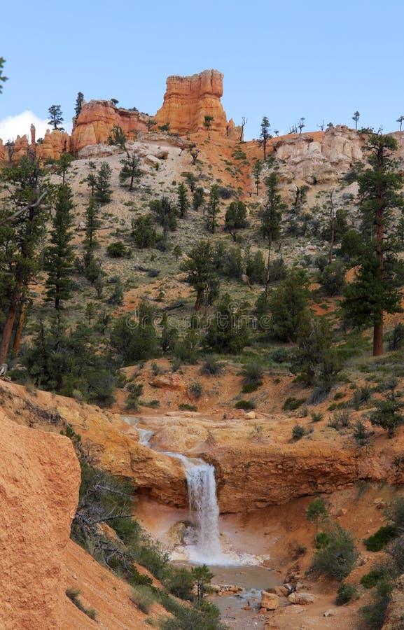 Vattenfall på den mossiga grottaslingan arkivfoton