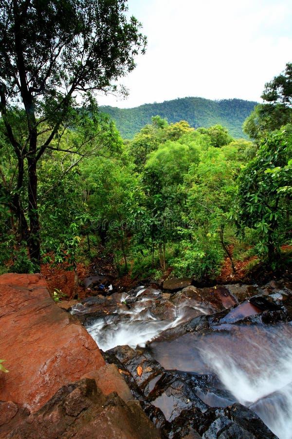 Vattenfall på djungel royaltyfri foto
