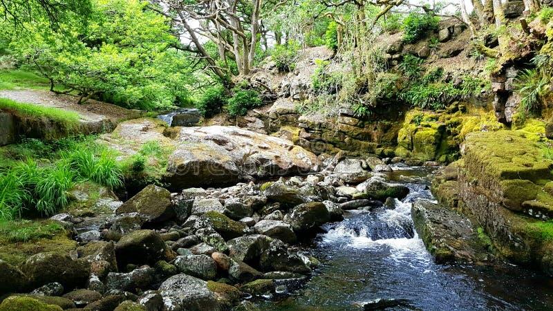 Vattenfall på floden avon Dartmoor nationalpark UK arkivbilder