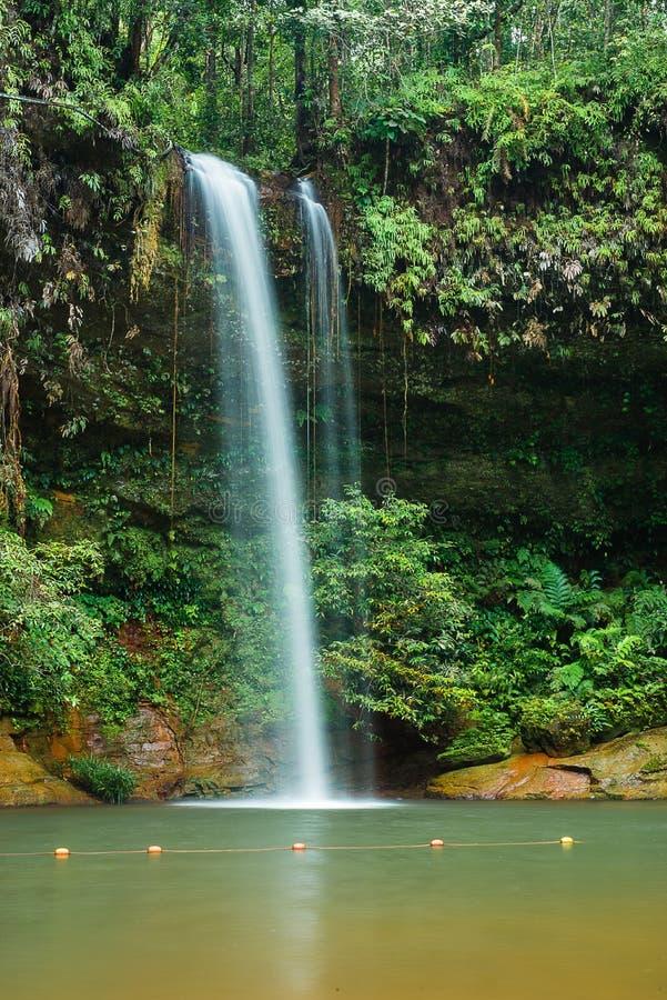 Vattenfall på Lambir kullar, Miri royaltyfri foto