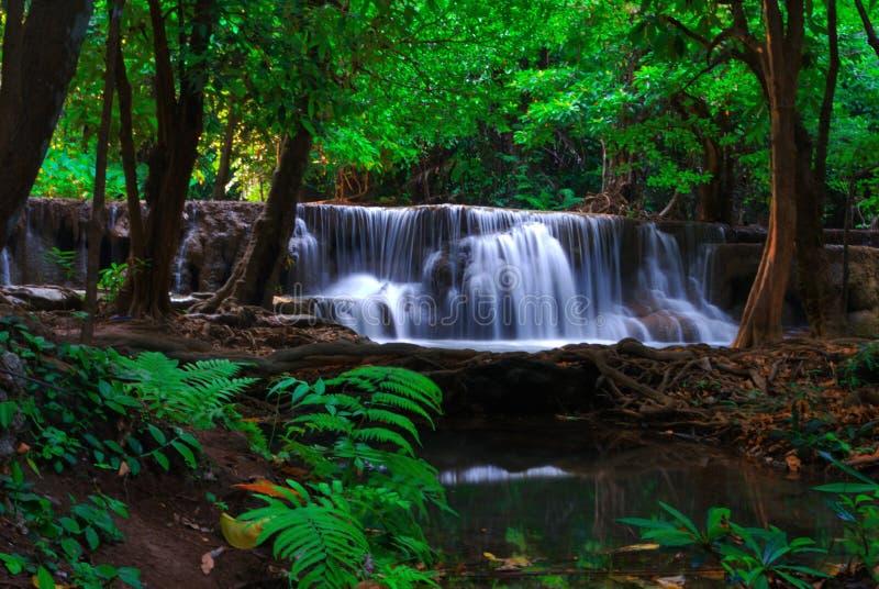 Vattenfall p? sommar royaltyfri fotografi