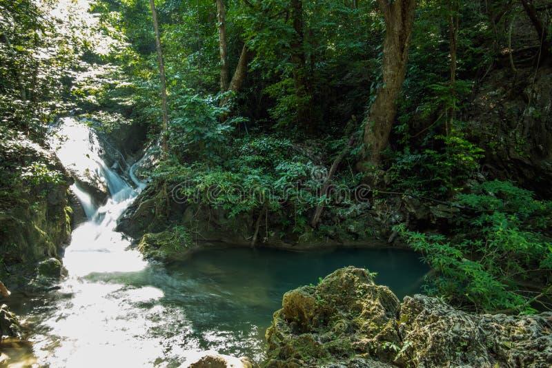 Vattenfall som är liten i djup skog arkivbild