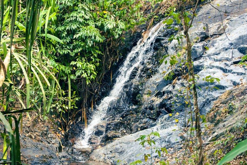 Vattenfall som döljas i den tropiska djungeln i Malaysia arkivbilder