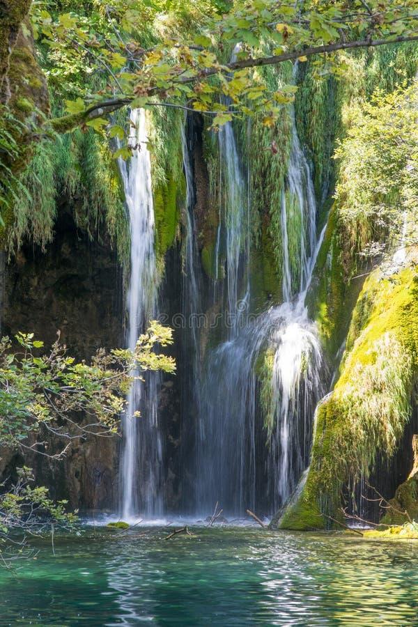 Vattenfall som döljas i skog på plitvicesjönationalparken Kroatien arkivfoto