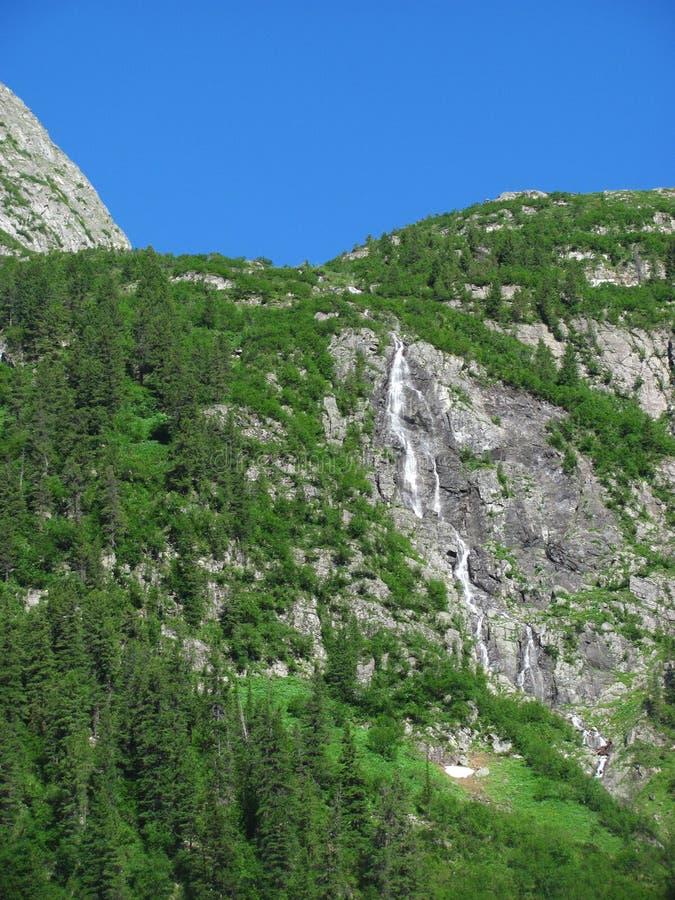 Vattenfall som omges av den gröna skogen arkivfoto
