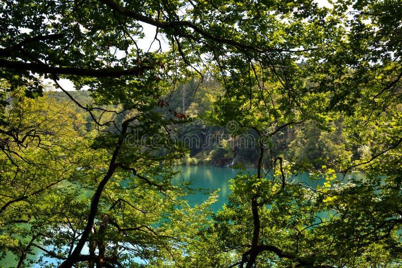 Vattenfall till turkossjön fotografering för bildbyråer