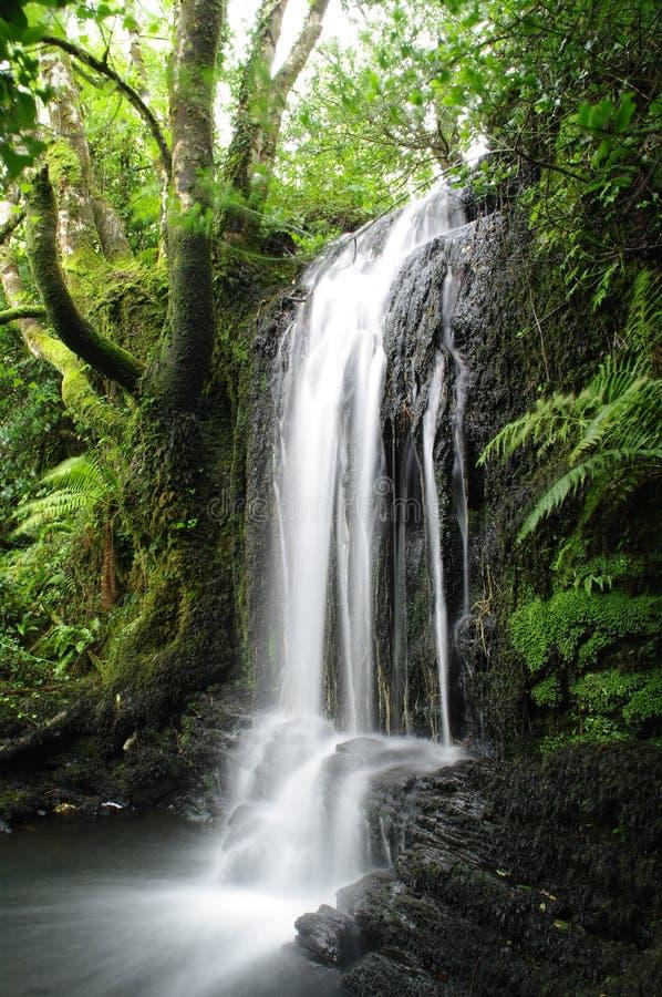 Vattenfall västra Cork Ireland fotografering för bildbyråer
