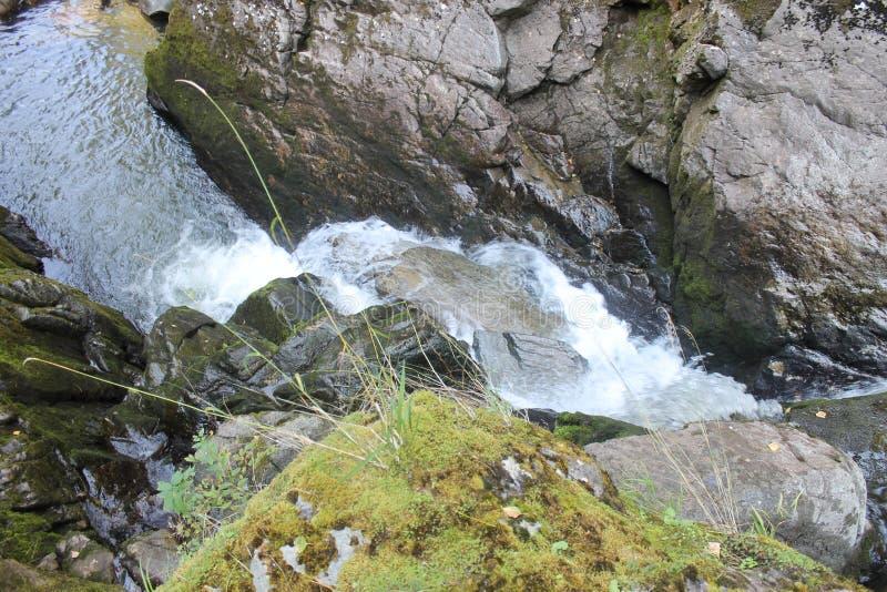 Vattenfallen av floden Katun arkivfoto