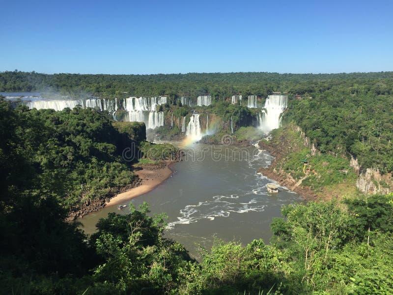 Vattenfallen av Iguazuen Rive royaltyfria bilder