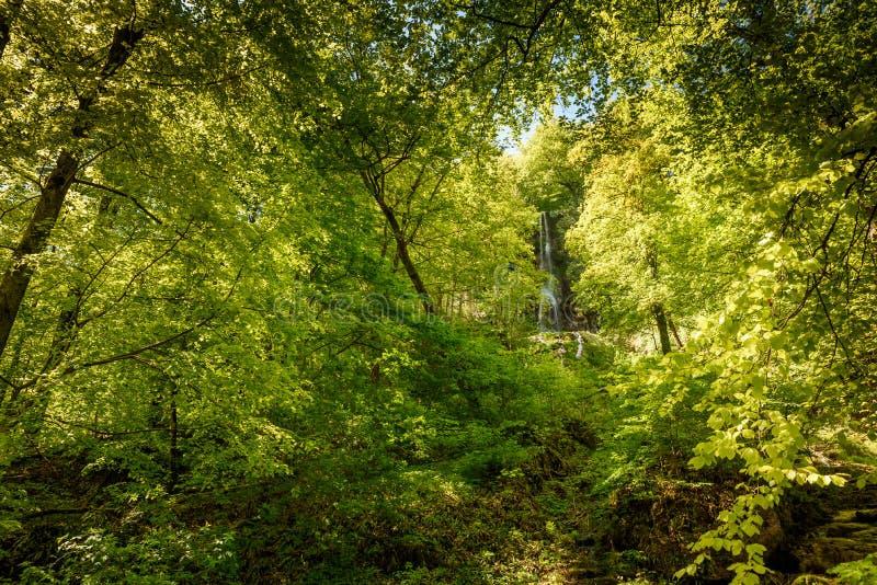 Vattenfallet av d?liga Urach, Swabian Alb, Baden-Wuerttemberg, Tyskland, Europa royaltyfri foto