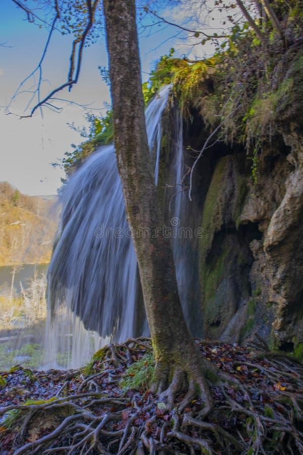 Vattenfallet bak rotar fotografering för bildbyråer