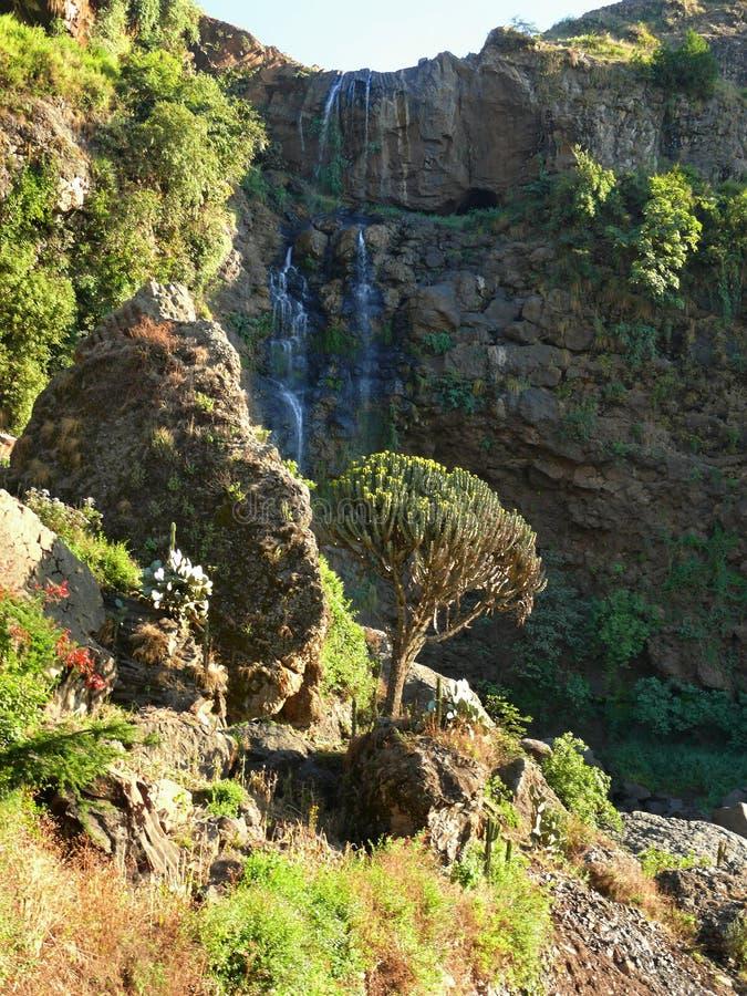 Vattenfallet i bergen stänger sig upp. Afrika Etiopien. royaltyfria bilder