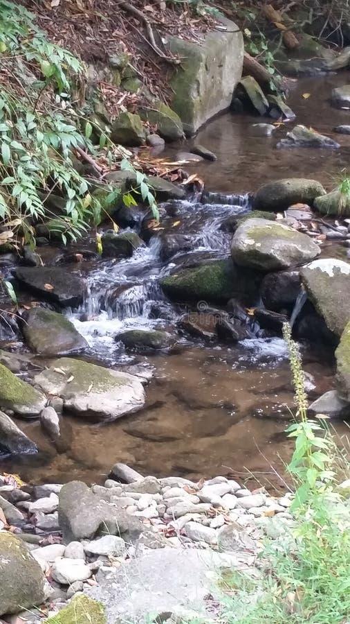 Vattenfallet kör långsamt royaltyfri bild