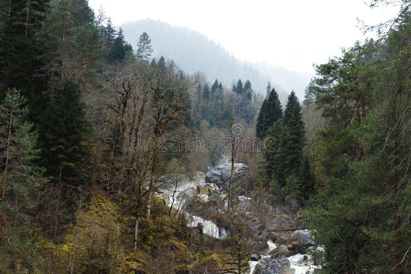 Vattenfallet och skogen vaggar in berg arkivbilder