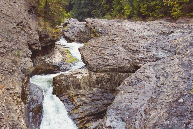 Vattenfallet på naturen parkerar Putna - Vrancea Rumänien royaltyfria foton