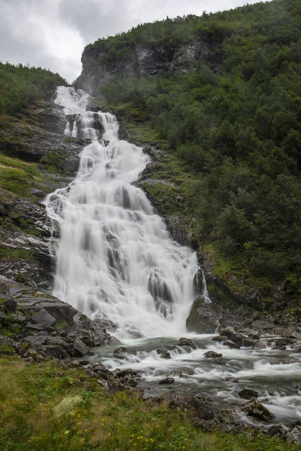 Vattenfallet ser som en vit skyler i gr?n omgivning royaltyfria bilder