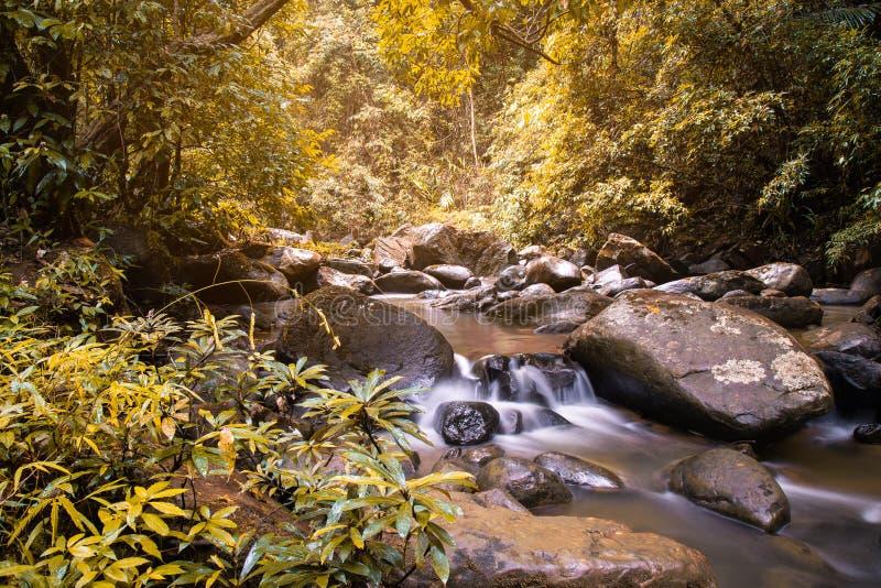 Vattenfallstr?m som fl?dar i h?stskog p? det Nan landskapet, Thailand arkivfoton