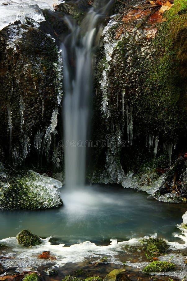 vattenfallträ royaltyfria foton
