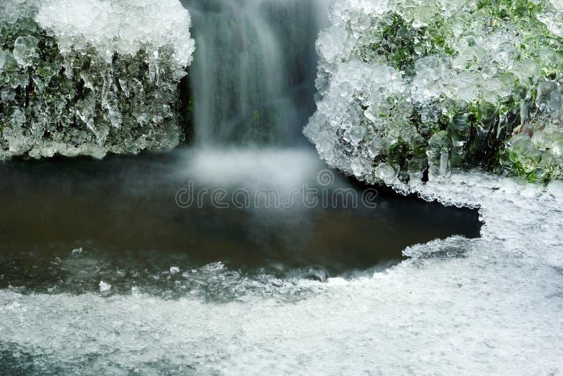 vattenfallträ royaltyfri foto