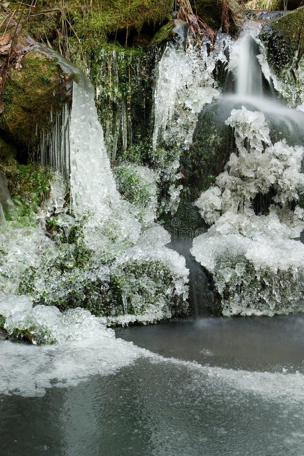 vattenfallträ royaltyfria bilder