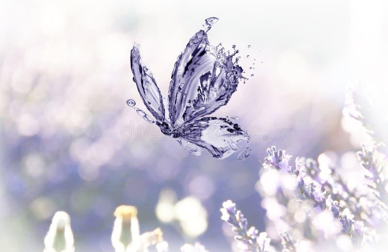 Vattenfjäril och lavender arkivfoto