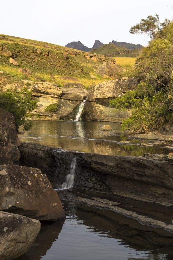 Vattenflöde in i liten bergpöl royaltyfria foton