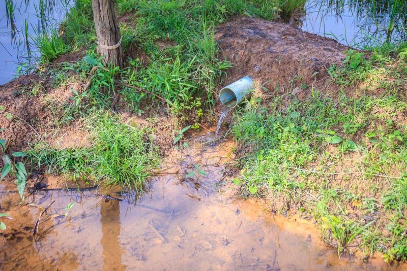 Vattenflöde på det blåa PVC-dräneringröret i ris brukar Bonde använt P royaltyfri foto