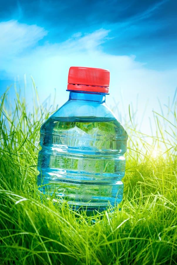 Vattenflaska på gräset arkivfoton