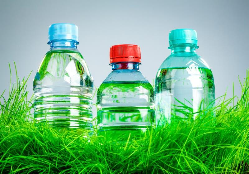 Vattenflaska på gräset royaltyfria bilder